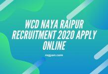 WCD Naya Raipur Recruitment 2020